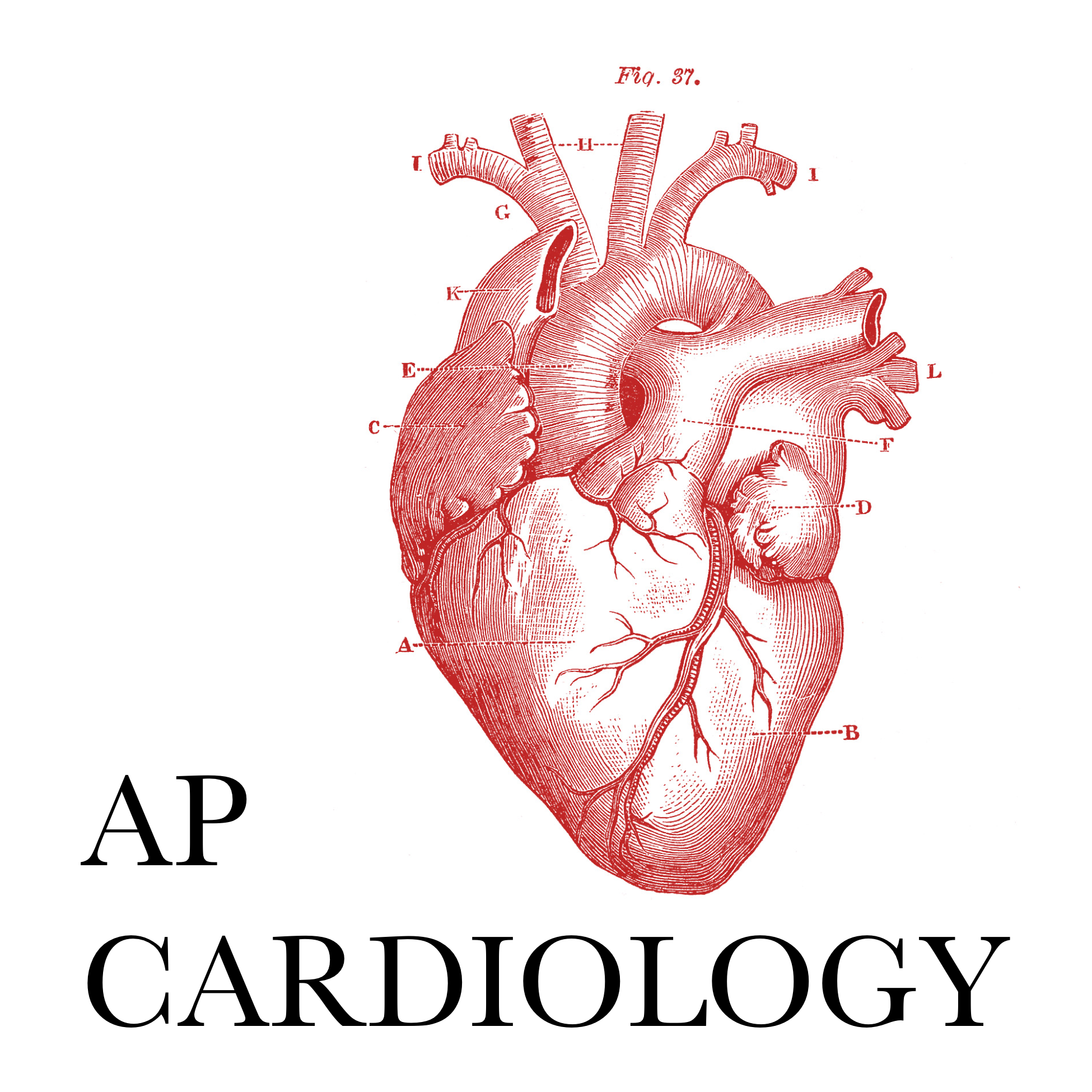 AP Cardiology